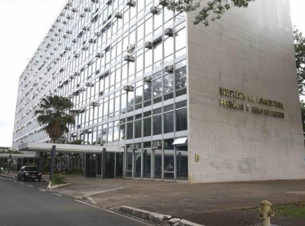 Equipe de Bolsonaro confirma fusão de Agricultura e Meio Ambiente