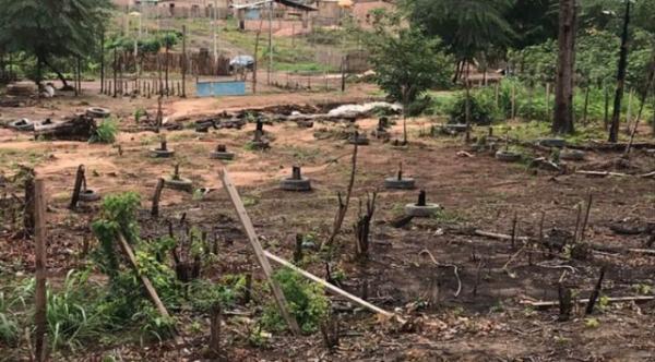 Fraudes ambientais na Amazônia . Saem condenações de até 20 anos de prisão