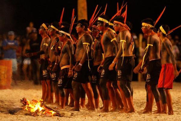 Terra indígena no Pará é invadida por madeireiros