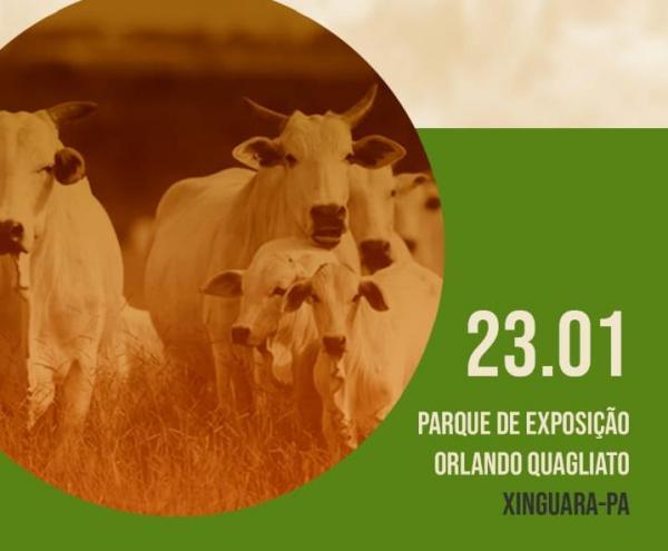 Xinguara é sede do 1º Encontro da Cadeia Agroindustrial Paraense