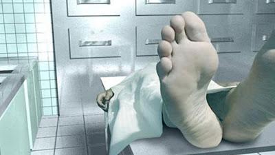 Sete mortos: Corpos de assaltantes de banco são identificados no Pará