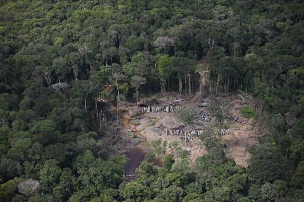 Com nova lei, Estado promove regularização fundiária e combate grilagem e desmatamento