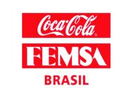 Coca-Cola FEMSA Brasil promove ação de incentivo à educação com colaboradores e comunidade