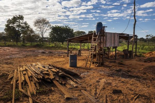 Crime organizado e milícias estão ligados a desmatamentos e queimadas na Amazônia, diz Human Rights Watch