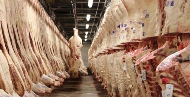 Exportação de carne bovina para a China em crescimento