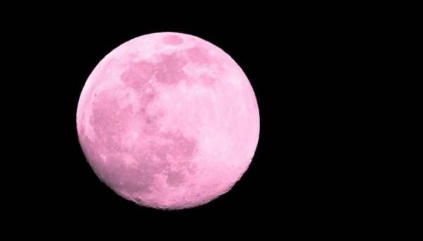 Como a Lua Rosa de abril mexerá com sua vida amorosa (de 5 signos em especial)