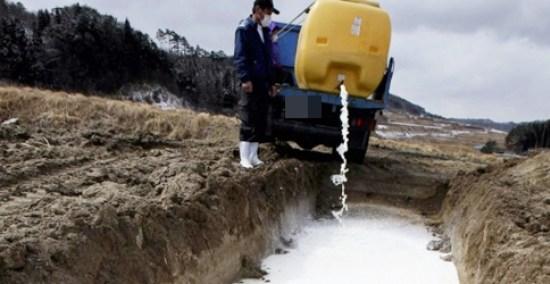 Produtores do País descartam milhões de litros de leite. ASSISTA ABAIXO O VÍDEO FEITO POR UM  PRODUTOR